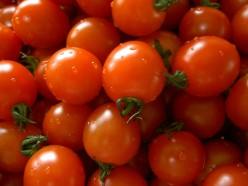 My Favorite Italian Tomato Pasta Sauce