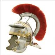 Roman History profile image