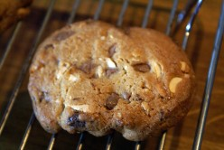 Chocolate Chip Cookies and Chocolate Chip Nut Cookies Recipe
