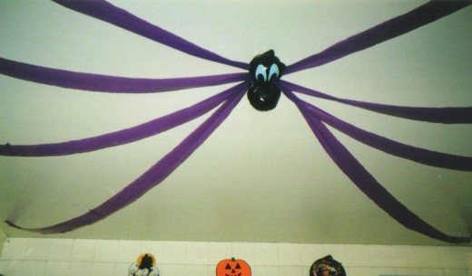 Ozzy the Spider