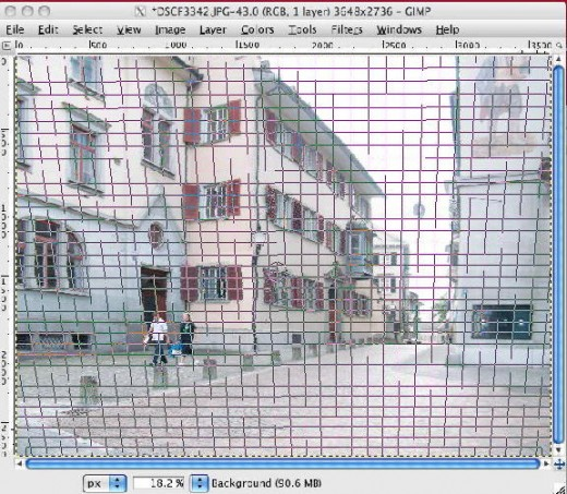 The image with grid lines  prior to transformation