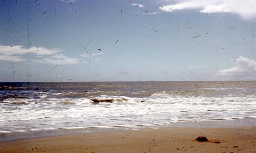 A walk on the beach ...