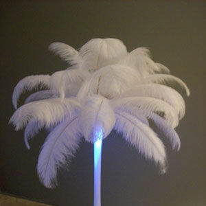 White ostrich feathers with a touch of ice blue lighting give a dramatic look at an evening wedding reception.
