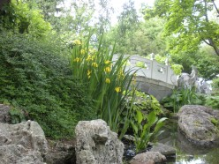 Photo 5.  I love little bridges over ponds and streams in these kinds of gardens.