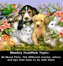 HubMob Weekly Topic: All About Pets