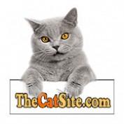 anne.moss profile image