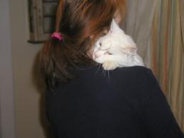 Hugs from Basil