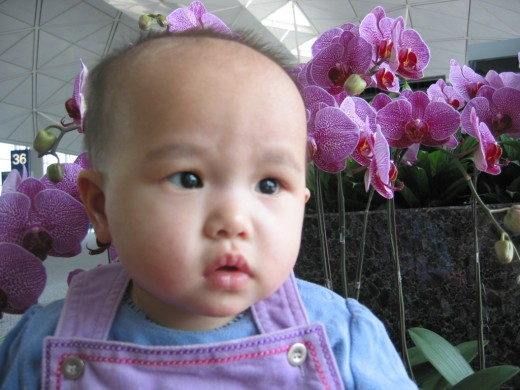 My Chinese daughter.