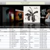 How to Organize Your iTunes Library - The Easy Way!