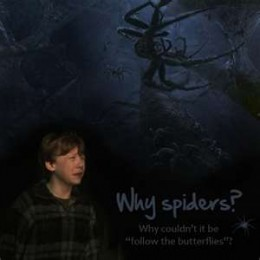One of my least favorite part of the movies.... Spiders!