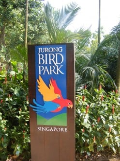 we took this a few years ago, at Jurong Bird Park