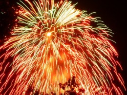 Fireworks are a beautiful sight, but bring misery to many pets.