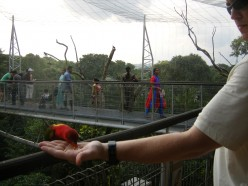 Jurong Bird Park, a pretty amazing place