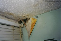 Roof Dampness