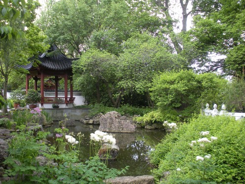I love to learn about and visit different gardens represented by different parts of the world.  Here is a Chinese garden, lovely and beautiful, and peaceful to walk through.