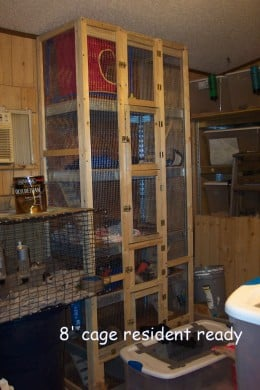 Possible Cage for a Shed or Spare Room.
