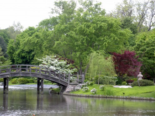Photo 4 - I love the water, bridge, and tree placement in this garden.  Its one of my favorites.