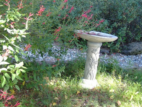This water feature has no water in it yet. It was recently placed at this location and is waiting for water to be hooked up. I like the design on the base. Very pretty.