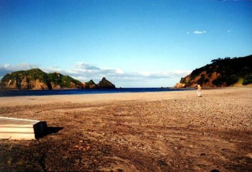 Dragon Island in the New Zealand's Great Barrier Island  Northeast of Auckland