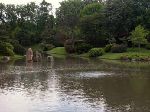 Photo 5 - I love these huge rocks in the pond.