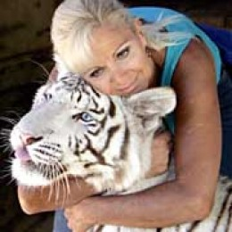 Pet Tiger