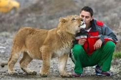 Strange Exotic Pets