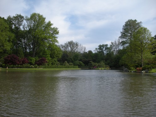 Photo 1- Big pond and garden area.  Ducks often come here, and there are many koi fish, etc.