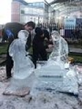 Ice Sculpting...