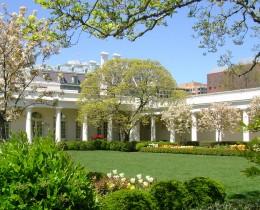 Rose Garden of The White House