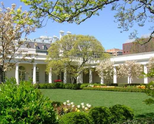 Rose Garden of The White House