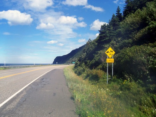 Warning sign in the Gaspe region of Quebec