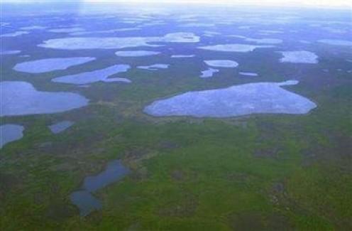 Thermokarst lakes in the tundra