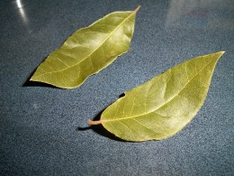 Bay leaves---don't forget the onion!