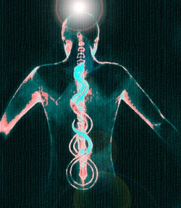 An illustration of Kundalini flowing up the spine.