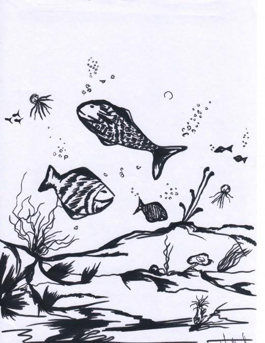 Underwater Sketch
