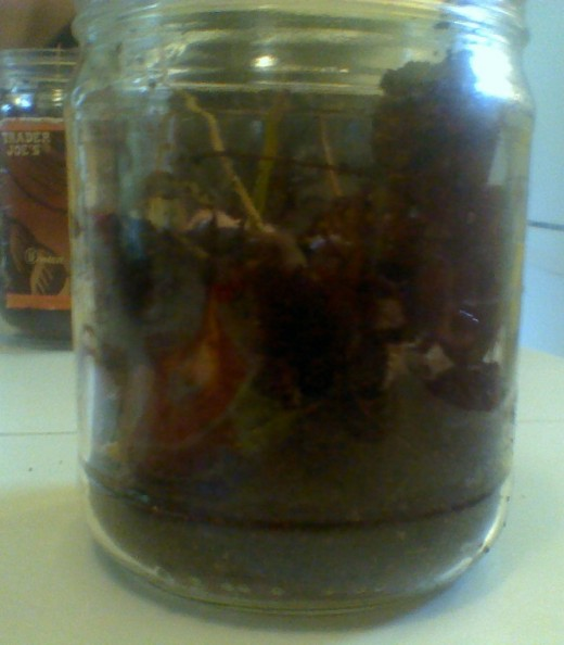 Close-up of a complete worm farm jar waiting for its cover.