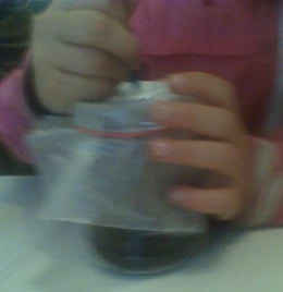 Step 7 is the final step - cover the jar with wax paper using a rubber band and poke air holes in the top.