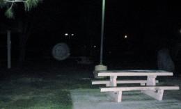 "An ""orb"" seen in a park."