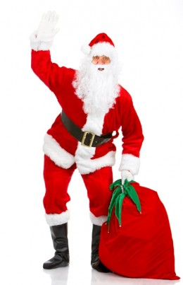 Santa. Or maybe a burglar in fancy dress. Check his bag, officer.