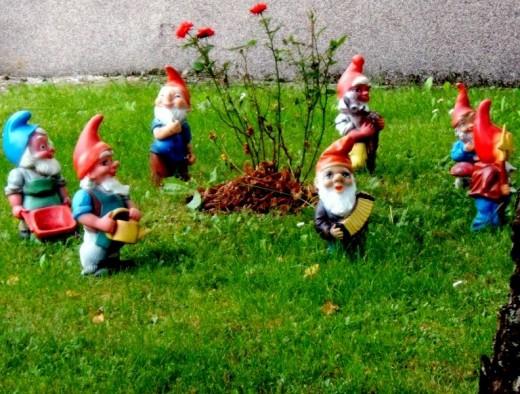 Garden Gnomes...