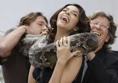 Pythons Can be Fun but are not recommended as a Romantic Gift!