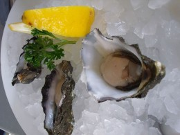 Raw oysters served on the half shell on a bed of ice with slices of lemon.