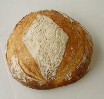 No Knead bread, still warm from the oven and ready to slice and slather with butter or herbed olive oil.