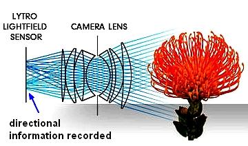 Lytro Camera Image Capture