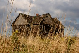 An abandoned old house behind some tall grass.