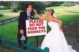 Humorous Wedding Photo