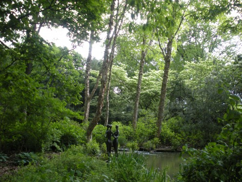 Photo 4 - This is in a wooded, shady area where there is a pond.  Its very lovely.