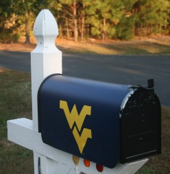 Lots of collegiate & professional sports magnetic mailbox covers are available online.