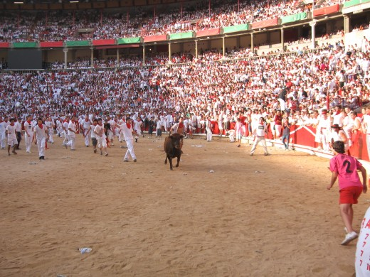 In the Ring after the run. Attempting to be a matador with some baby bulls.