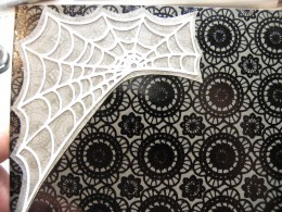 Spider Web/Background adhered to card